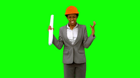 Happy architect raising arms on green screen Live Action