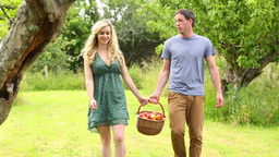 Happy couple holding basket full of apples Footage