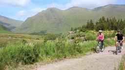 Couple riding their mountain bikes Footage