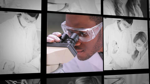 Three short clips of lab assistants at work Animation