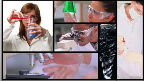 Short clips showing lab assistants Animation