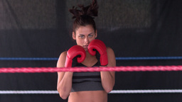 Sporty determined brunette boxing Live Action
