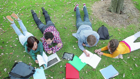 Students studying together on the grass Footage