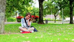 Happy student sitting on the grass making a phone  Footage