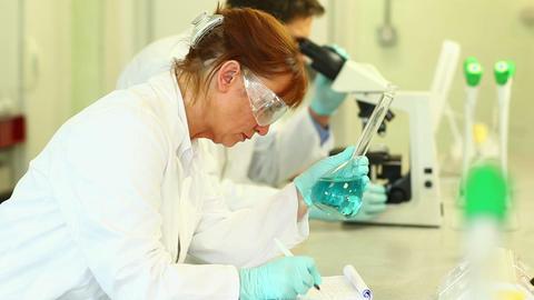 Focused science student examining beaker Footage