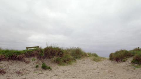 Tranquil deserted beach scene Live Action