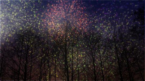 Fireworks Celebration in Winter HD Stock Video Footage