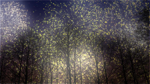 Fireworks Celebration in Winter HD Animation