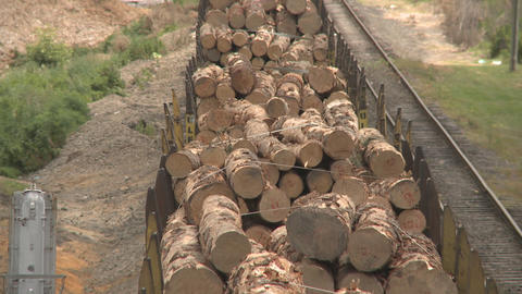 lumber on train from rear Stock Video Footage