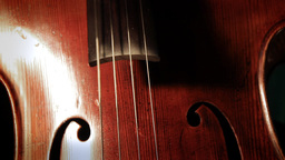 Cello 01 Stock Video Footage