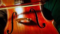 Cello 05 Stock Video Footage