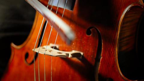 Cello 27 GIF 動畫