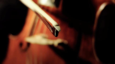Cello 28 ARTCOLORED Stock Video Footage