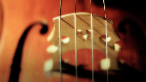 Cello 32 ARTCOLORED Stock Video Footage