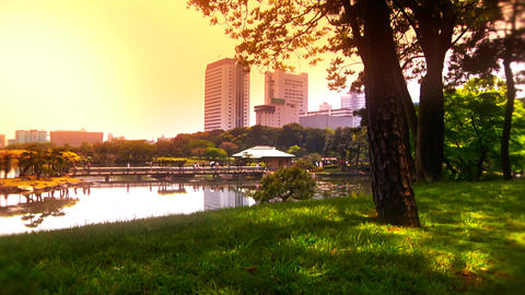 Japanese Garden ARTCOLRED 05 Stock Video Footage