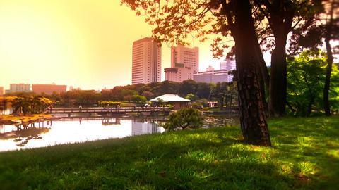 Japanese Garden ARTCOLRED 05 Footage