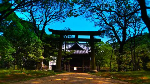 Japanese Garden Shrine ARTCOLORED Stock Video Footage