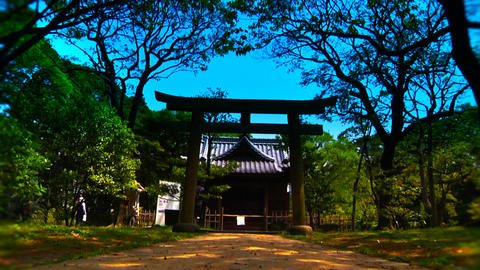 Japanese Garden Shrine ARTCOLORED Stock Video Footage