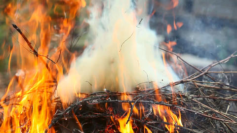 The bonfire Stock Video Footage