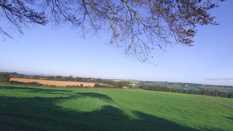 Bright Sunny Sky Over The Fields stock footage