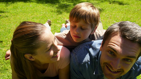 Little boy and parents smiling at camera in the park while little boy makes funny faces Live Action