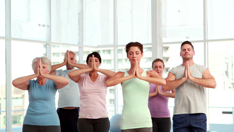Yoga class doing tree pose together Stock Video Footage