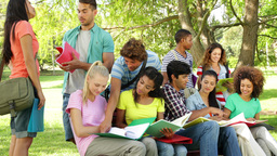 Students reading and chatting together outside on campus Stock Video Footage
