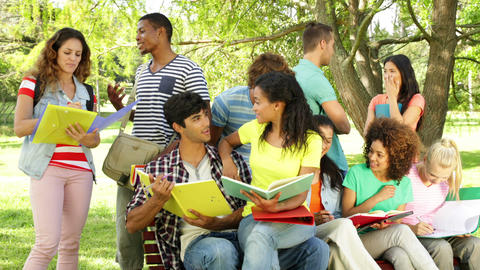 Happy students reading and chatting together outside on campus Footage