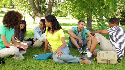 Happy students chatting together outside on campus Stock Video Footage