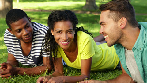 Smiling friends chatting and lying on the grass Stock Video Footage
