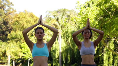 Smiling fit friends doing yoga in the park Stock Video Footage