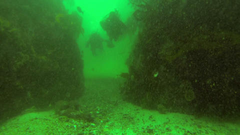 Two scuba divers swimming Stock Video Footage
