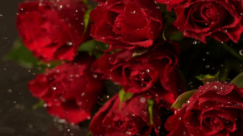 Bouquet of red roses falling onto wet surface Stock Video Footage
