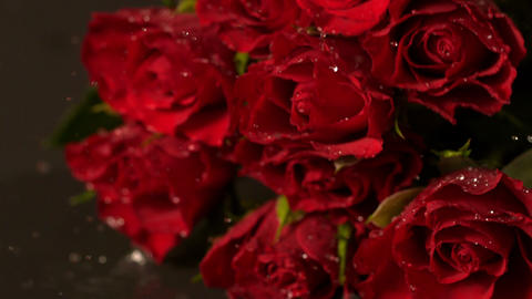 Bouquet of red roses falling onto wet surface Footage