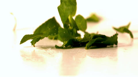 Fresh mint leaves falling onto white surface Stock Video Footage