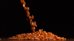 Peanuts pouring on black background Stock Video Footage