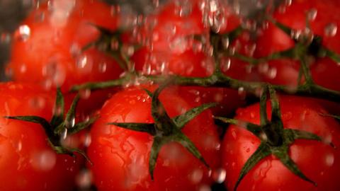 Water raining on cherry tomatoes Footage