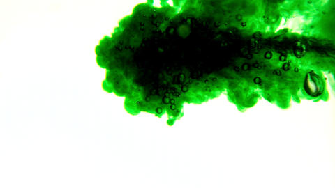 Green ink pouring into water on white background Footage