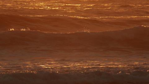 Waves Crashing on Beach ライブ動画
