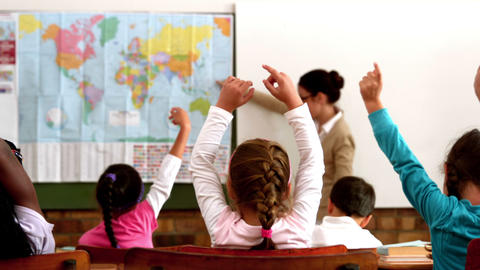 Young pupils raising hands during geography lesson Footage