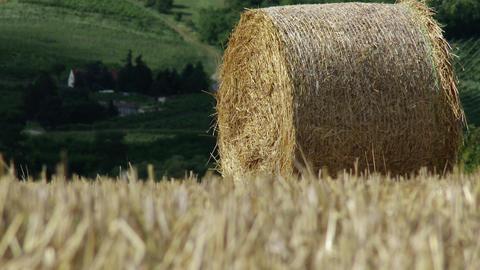 4 K Hay Bale in Summer 2 heat mirage Footage