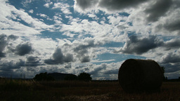 Clouds Over Grain Field 1 stock footage