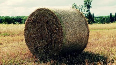 Hay Bale on Harvested Grain Field 6 stylized Footage