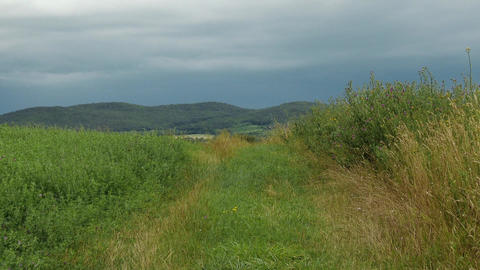 Summer Dull Weather in Kali Basin Hungary 2 Footage