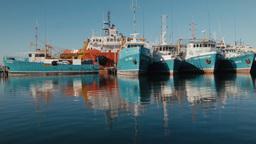 Various Boats Docked at Fremantle Fishing Boat Har Footage