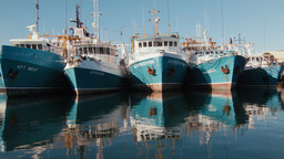 Row of Boats Docked at Fremantle Fishing Boat Harb Footage