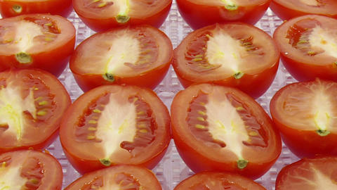 Time-lapse of drying tomato vegetable 6b1 Live Action