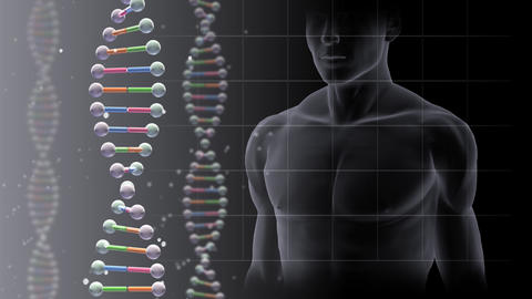 DNA 2 B A1d Animation