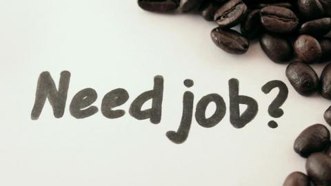 Need job. written on white under coffee Footage