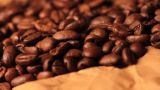 Beautiful Coffee Beans Close-up stock footage